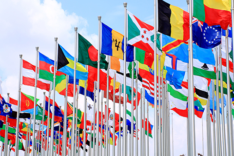 This is a stock photo. A collection of world flags flying at full staff.